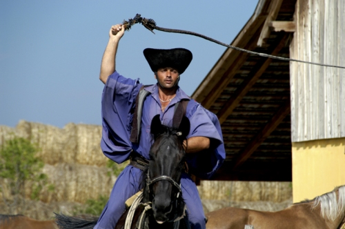 csikos riding and cracking a bull whip